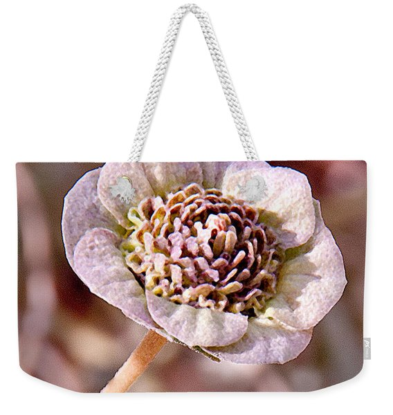 Weekender Tote Bag featuring the photograph Dry Bloom by Mae Wertz