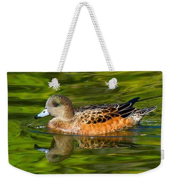 Young Female Mallard Duck Weekender Tote Bag