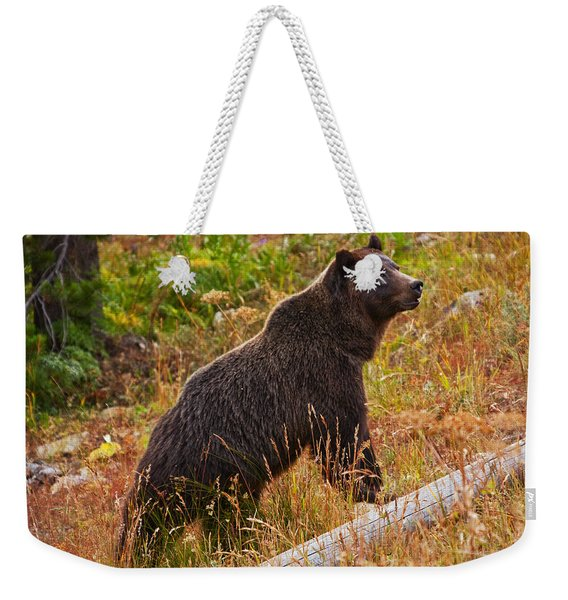 Dunraven Grizzly Weekender Tote Bag