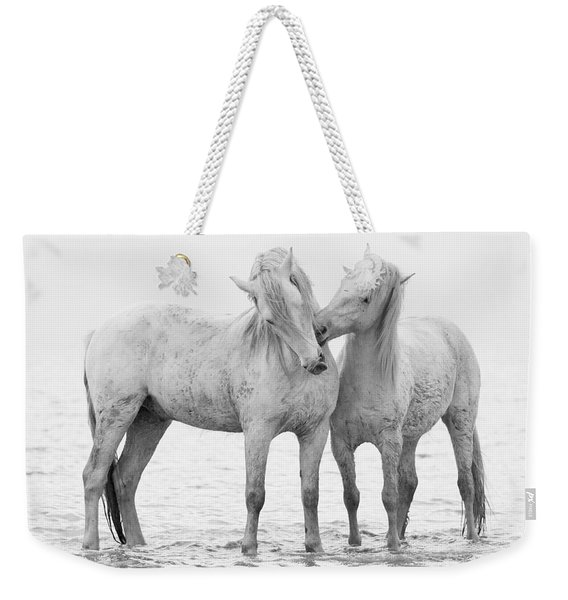 Early Morning Horse Play Weekender Tote Bag