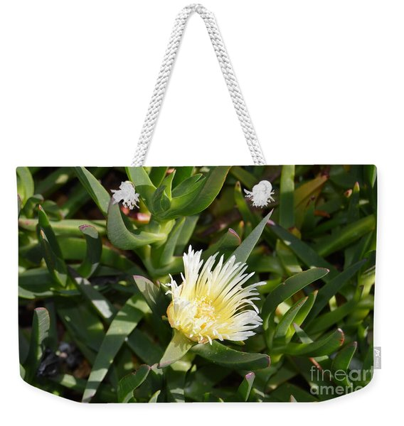 Weekender Tote Bag featuring the photograph Earth Music by Laurie Lundquist