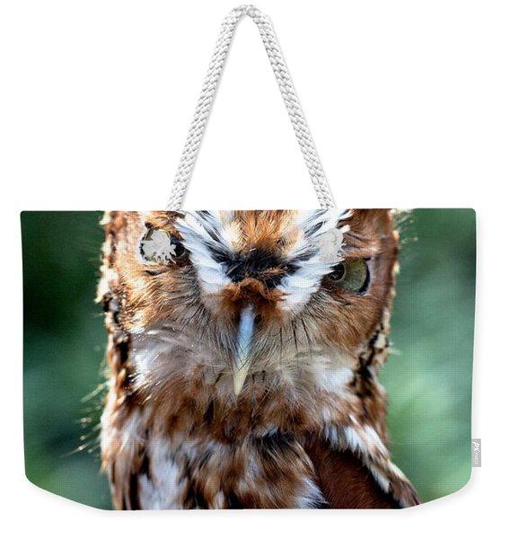 Eastern Screech-owl Weekender Tote Bag