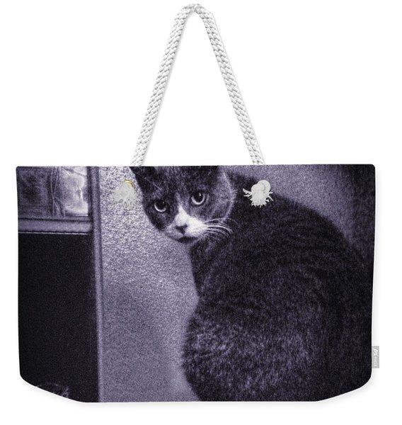 El Gato Loco Weekender Tote Bag
