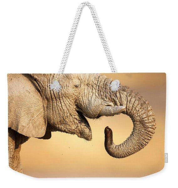 Elephant Drinking Weekender Tote Bag