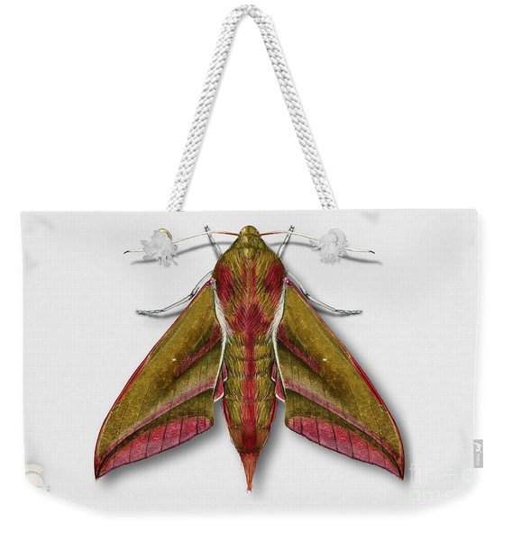 Elephant Hawk Moth Butterfly - Deilephila Elpenor Naturalistic Painting - Nettersheim Eifel Weekender Tote Bag