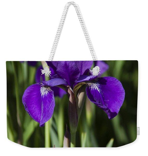 Eloquent Iris Weekender Tote Bag