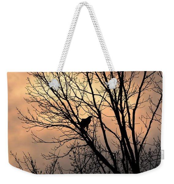 End Of The Day  Red Tailed Hawk Weekender Tote Bag