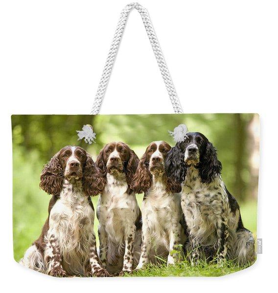 English Springer Spaniels Weekender Tote Bag