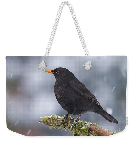 Eurasian Blackbird And Snowfall Germany Weekender Tote Bag
