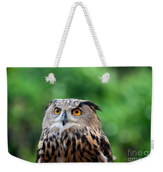 Eurasian Or European Eagle Owl Bubo Bubo Stares Intently Weekender Tote Bag