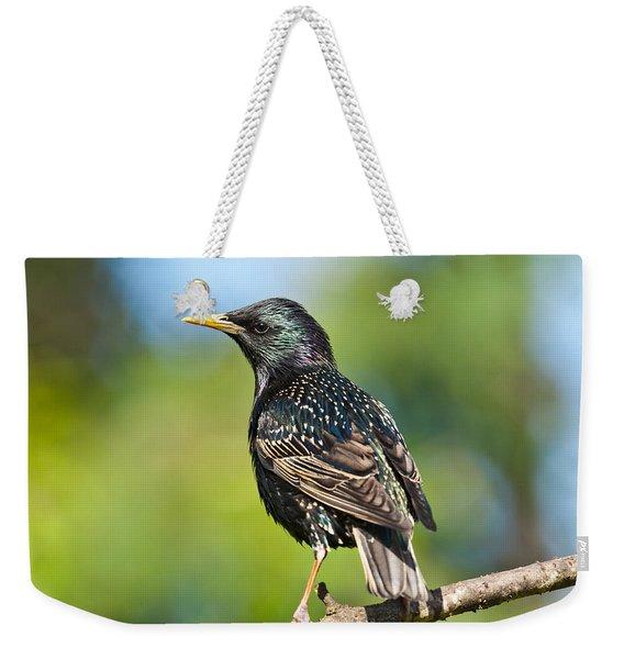 European Starling In A Tree Weekender Tote Bag