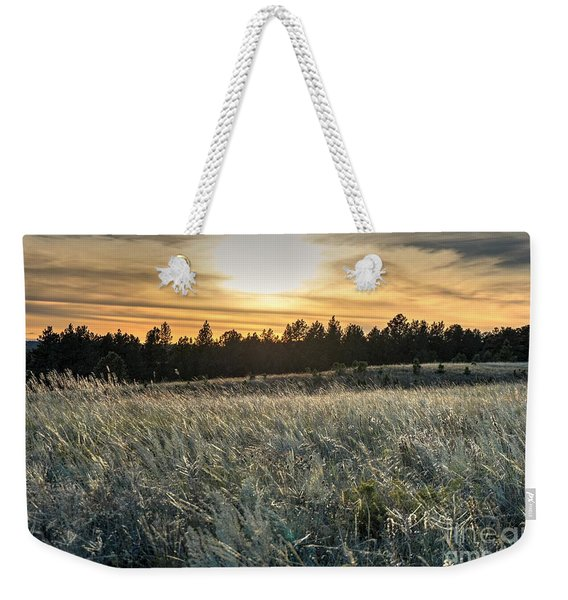 Evening Grasses In The Black Hills Weekender Tote Bag