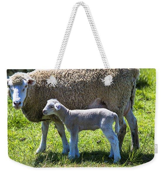 Ewe With Her Lamb Weekender Tote Bag