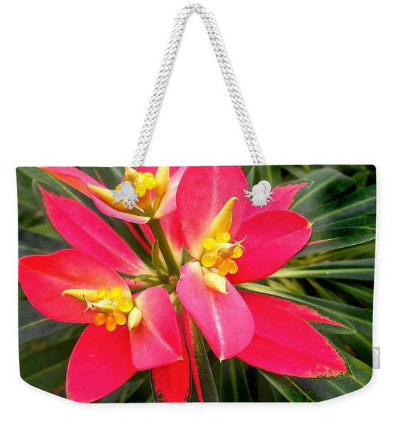 Exotic Red Flower Weekender Tote Bag