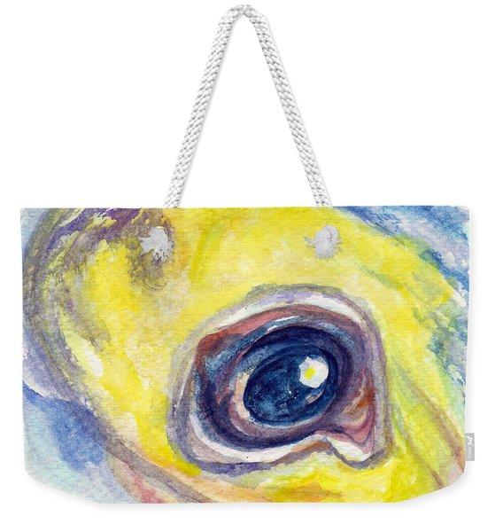 Eye Of Pelican Weekender Tote Bag
