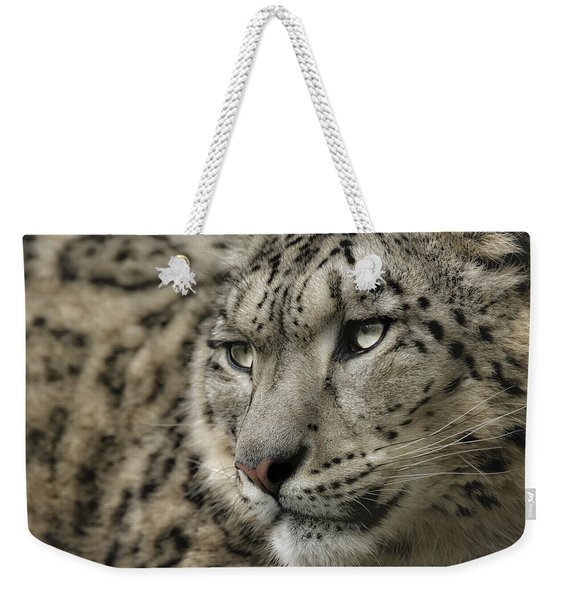 Eyes Of A Snow Leopard Weekender Tote Bag