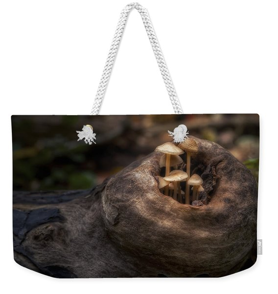 Fairie Garden Weekender Tote Bag