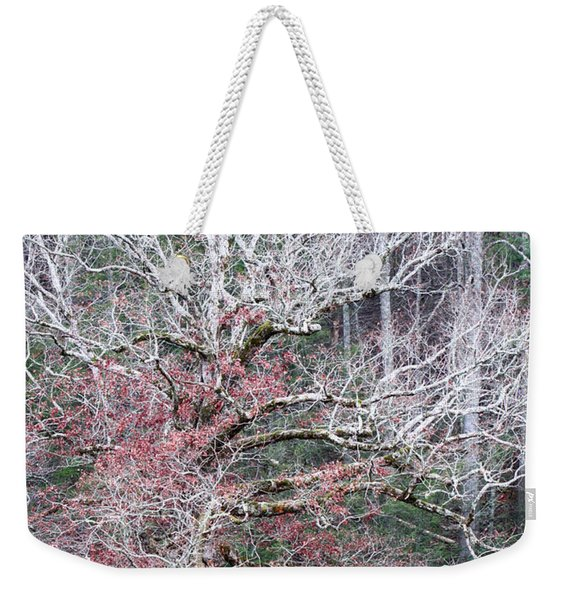Fall At Cades Cove Weekender Tote Bag