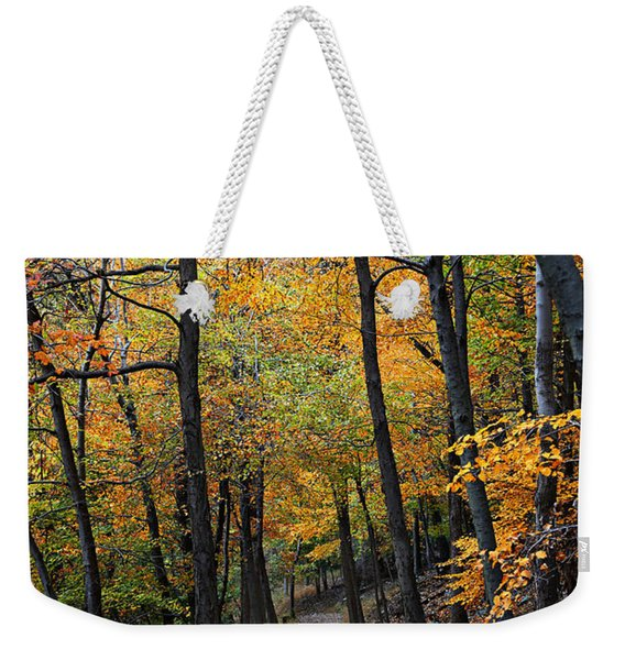 Fall Foliage Colors 03 Weekender Tote Bag