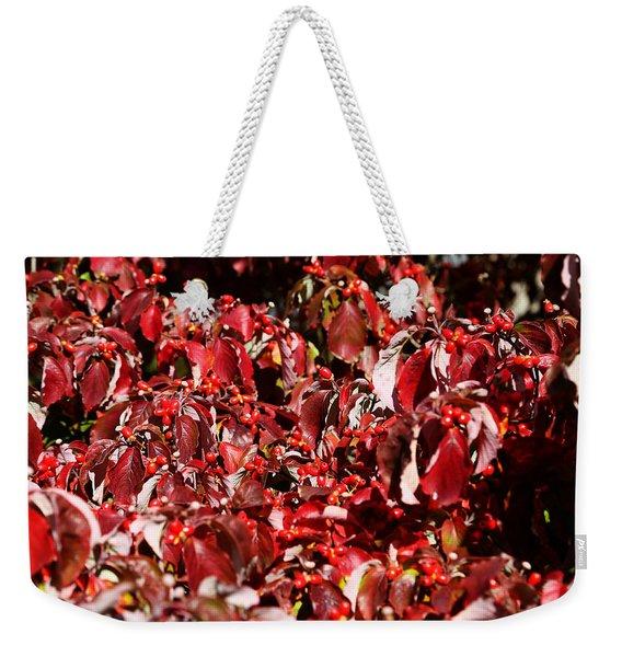 Fall Foliage Colors 08 Weekender Tote Bag