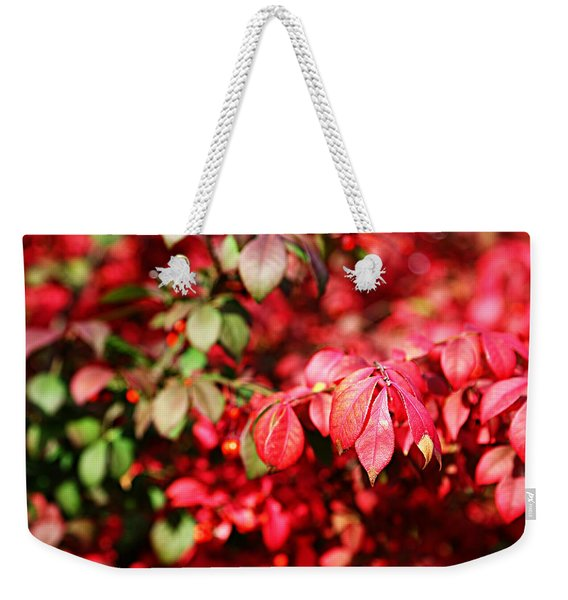 Fall Foliage Colors 10 Weekender Tote Bag