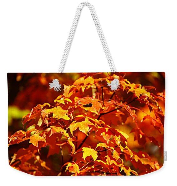 Fall Foliage Colors 14 Weekender Tote Bag