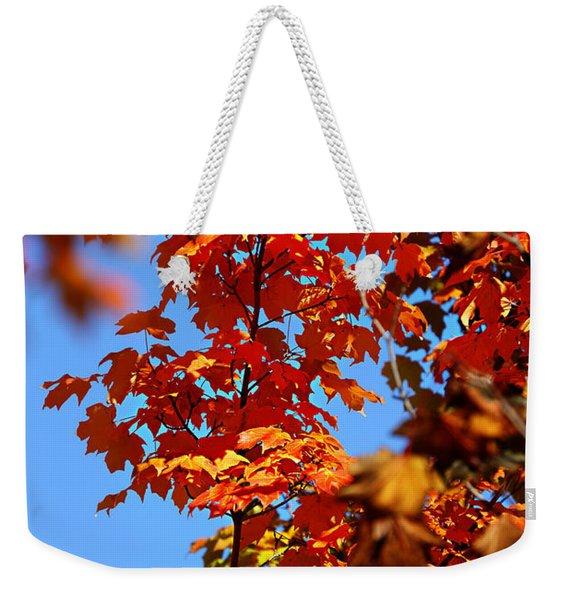 Fall Foliage Colors 15 Weekender Tote Bag
