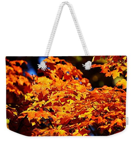 Fall Foliage Colors 16 Weekender Tote Bag