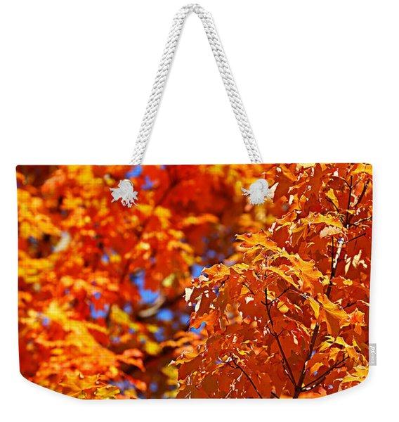 Fall Foliage Colors 17 Weekender Tote Bag