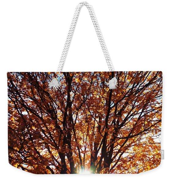 Fall Light Weekender Tote Bag