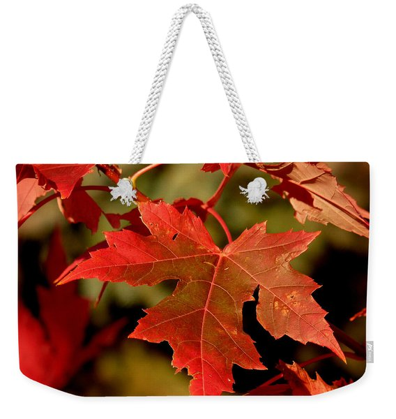 Fall Red Beauty Weekender Tote Bag