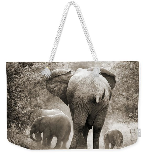 Family Of Elephants Weekender Tote Bag