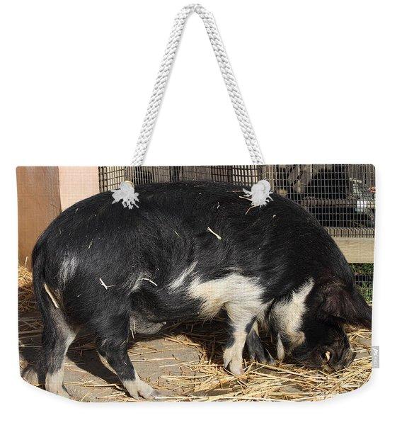 Farm Pig 7d27344 Weekender Tote Bag