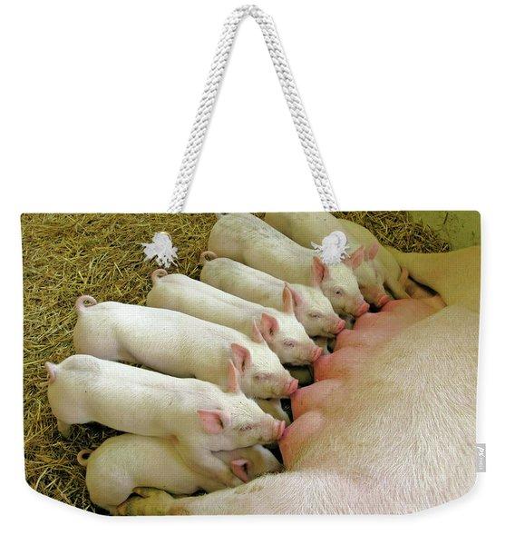 Feeding The Family Weekender Tote Bag