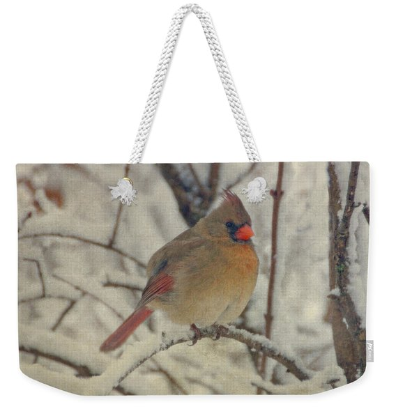 Female Cardinal In The Snow II Weekender Tote Bag