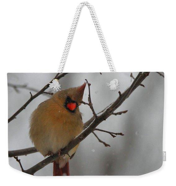 Female Cardinal In Winter Weekender Tote Bag