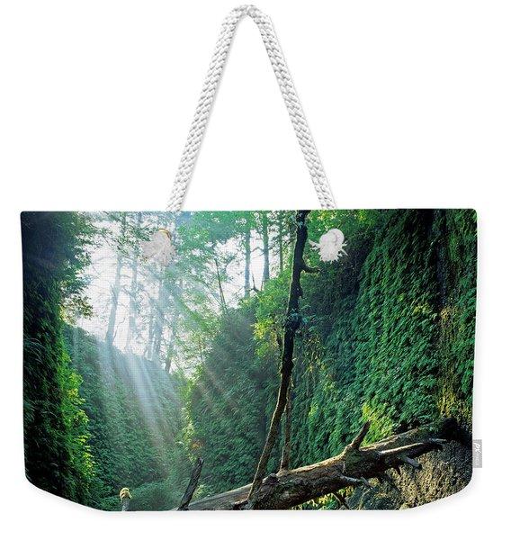 Fern Canyon, Prairie Creek State Park Weekender Tote Bag