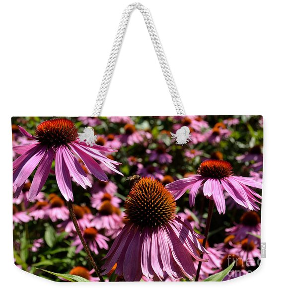 Field Of Echinaceas Weekender Tote Bag