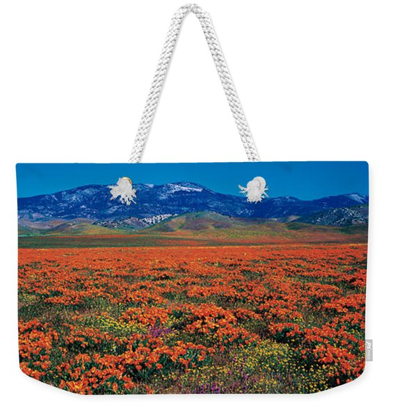 Field, Poppy Flowers, Antelope Valley Weekender Tote Bag