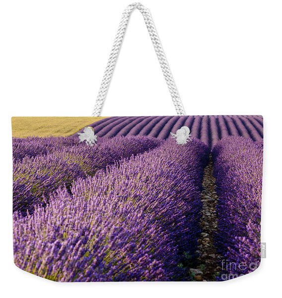 Weekender Tote Bag featuring the photograph Fields Of Lavender by Brian Jannsen