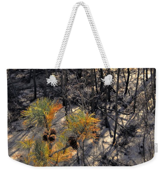 First Sign Of Spring At Cape Henlopen Weekender Tote Bag