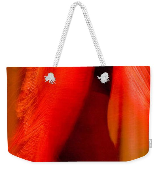 Weekender Tote Bag featuring the photograph Flamenco Series 10 by Catherine Sobredo