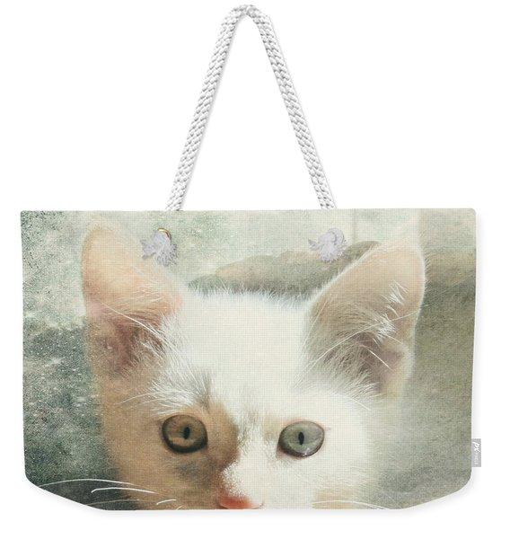 Flamepoint Siamese Kitten Weekender Tote Bag
