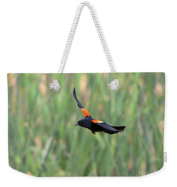 Flight Of The Blackbird Weekender Tote Bag