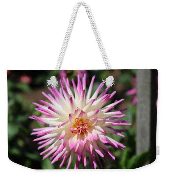 Floral Beauty 3  Weekender Tote Bag