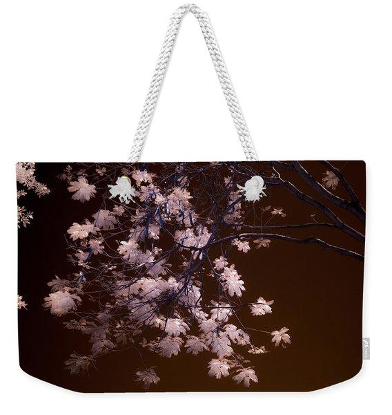 Florida Spring Weekender Tote Bag