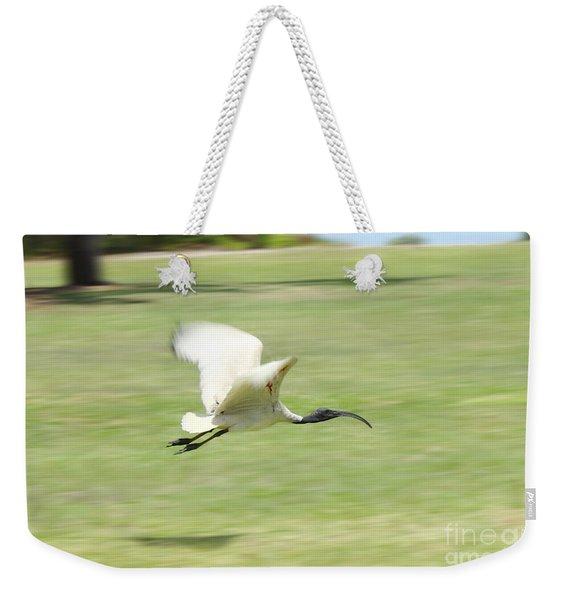 Flying Ibis Weekender Tote Bag