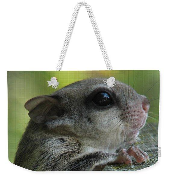 Flying Squirrel Weekender Tote Bag