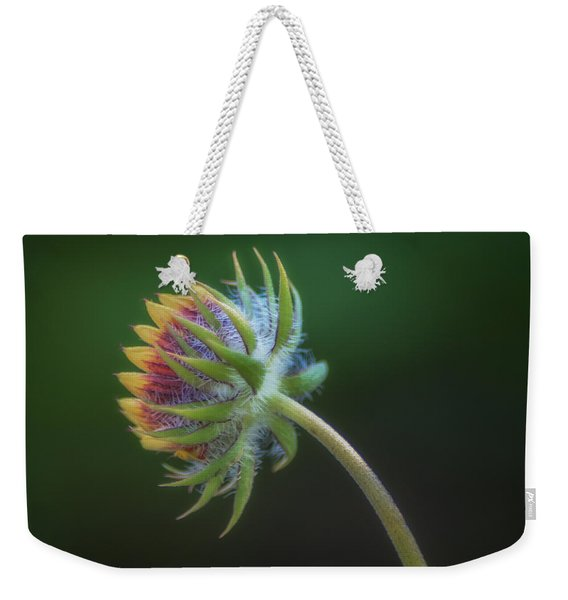 Following The Light Weekender Tote Bag