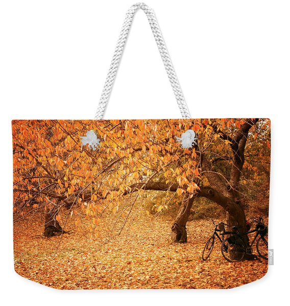 For Two - Autumn - Central Park Weekender Tote Bag